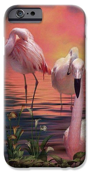 Flamingo iPhone Cases - Where The Wild Flamingo Grow iPhone Case by Carol Cavalaris