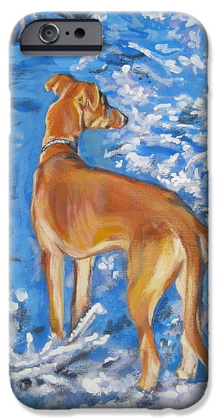 Whippet iPhone Case by Lee Ann Shepard