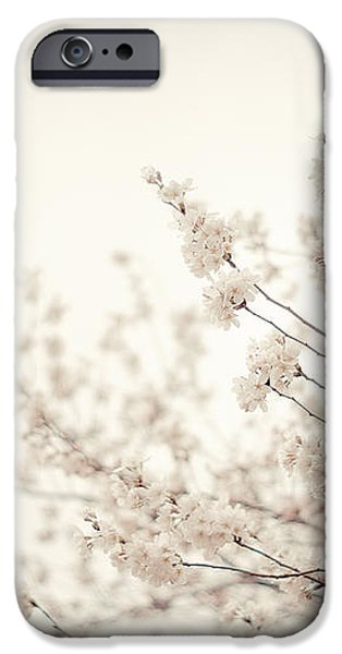 Whisper - Spring Blossoms - Central Park iPhone Case by Vivienne Gucwa