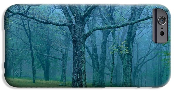 Mist iPhone Cases - Whispering Mist iPhone Case by Sean Cupp