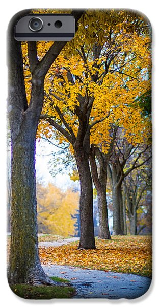 Fall iPhone Cases - Whispers of the Forest iPhone Case by Daniel Chen