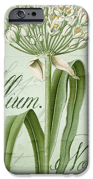 Alliums iPhone Cases - White Allium II iPhone Case by Mindy Sommers