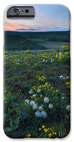 Yakima Valley iPhone Cases - White  and Gold iPhone Case by Mike Dawson