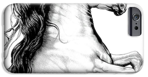Drawing Of A Horse iPhone Cases - White Andalusian with Black Points iPhone Case by Cheryl Poland