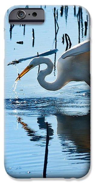 White Egret At Horicon Marsh Wisconsin iPhone Case by Steve Gadomski