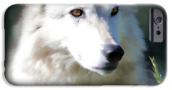 Puppies iPhone Cases - White Fang IV iPhone Case by Athena Mckinzie