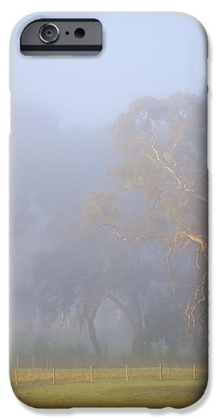 White Gum Morning iPhone Case by Mike  Dawson