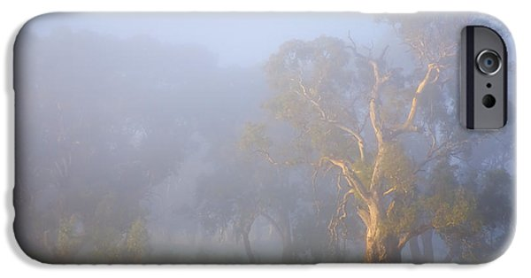 Mist iPhone Cases - White Gum Morning iPhone Case by Mike  Dawson