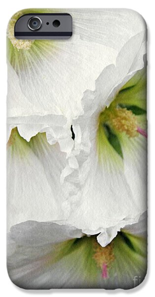 Hollyhock iPhone Cases - White Hollyhocks iPhone Case by Sarah Loft