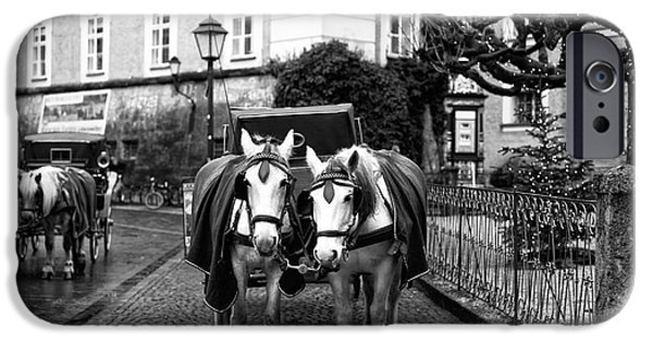 Horse And Buggy iPhone Cases - White Horses in Salzburg iPhone Case by John Rizzuto