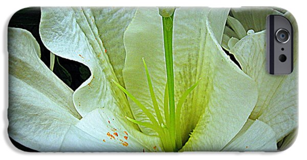 Flora iPhone Cases - White Lily Macro iPhone Case by Bonita Brandt
