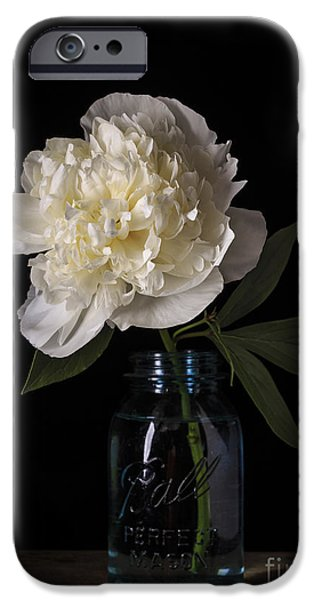 Bloosom iPhone Cases - White Peony Flower iPhone Case by Edward Fielding