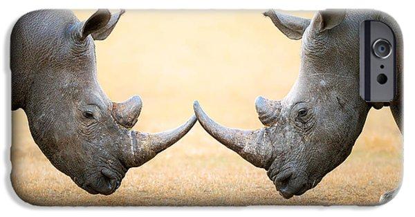 Rhino iPhone Cases - White Rhinoceros  head to head iPhone Case by Johan Swanepoel