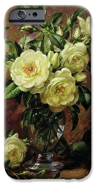 Rose Paintings iPhone Cases - White Roses - A Gift from the Heart iPhone Case by Albert Williams