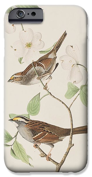 Sparrow iPhone Cases - White throated Sparrow iPhone Case by John James Audubon