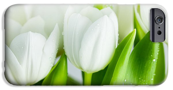 Flora iPhone Cases - White Tulips iPhone Case by Nailia Schwarz