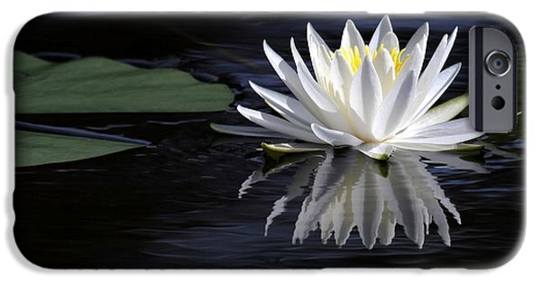 Garden iPhone Cases - White Water Lily iPhone Case by Sabrina L Ryan