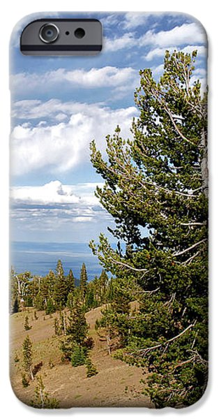Whitebark Pine trees Overlooking Crater Lake - Oregon iPhone Case by Christine Till