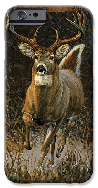 Miller iPhone Cases - Whitetail Deer iPhone Case by JQ Licensing
