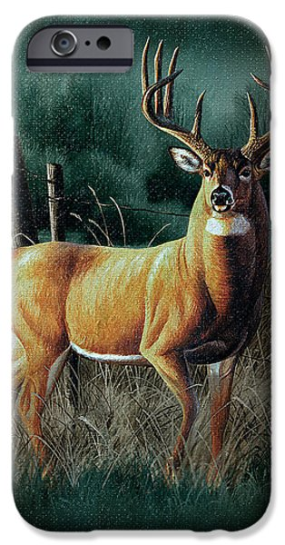 Whitetail Deer iPhone Cases - Whitetail Deer iPhone Case by JQ Licensing