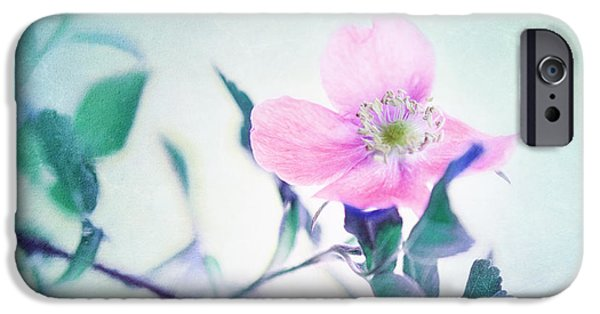 Rose iPhone Cases - Wild Beauty iPhone Case by Priska Wettstein