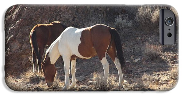 Horse iPhone Cases - Wild Horses iPhone Case by Robin EL-Hachem