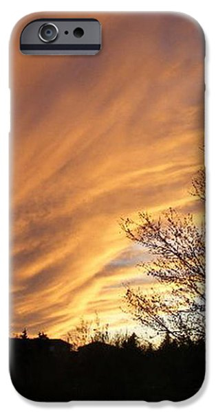 Wild Sky of Autumn iPhone Case by Barbara Griffin