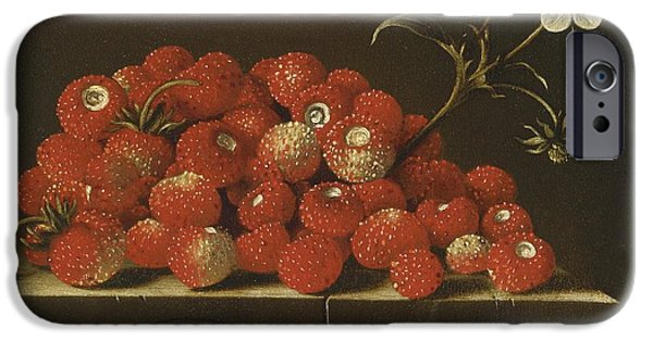 Ledge iPhone Cases - Wild Strawberries On A Ledge iPhone Case by Celestial Images