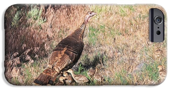 Gobbler iPhone Cases - Wild Turkey Hen With Chicks iPhone Case by Donna Kennedy