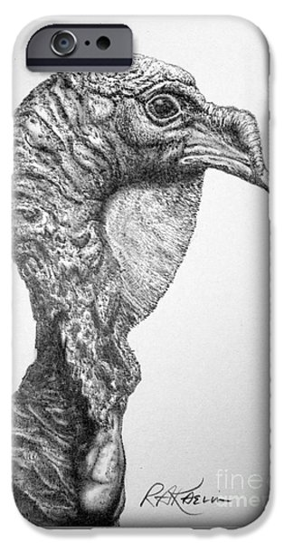 Nature Study Drawings iPhone Cases - Wild Turkey iPhone Case by Roy Kaelin