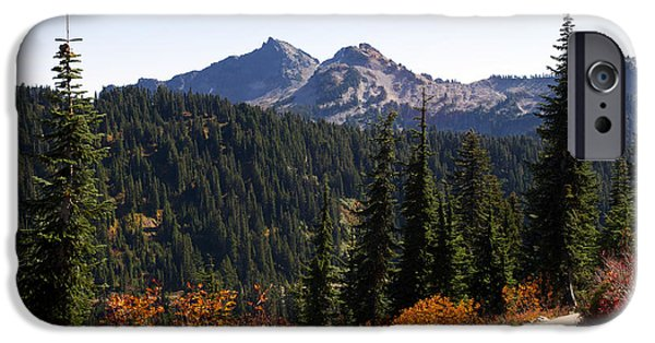 Pathway iPhone Cases - Wilderness Trail iPhone Case by Emerita Wheeling