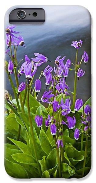 Wildflower Cascade iPhone Case by Mike  Dawson