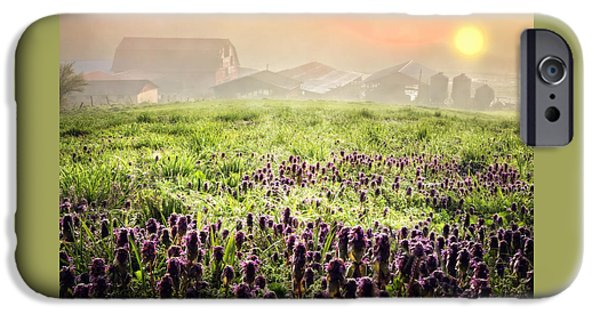 Floral Photographs iPhone Cases - Wildflower Dawn iPhone Case by Debra and Dave Vanderlaan