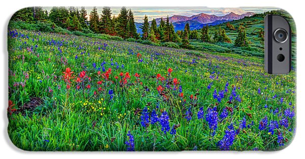 Fort Collins Photographs iPhone Cases - Wildflower Hill iPhone Case by Scott Mahon