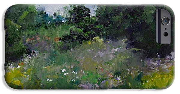 Recently Sold -  - Storm iPhone Cases - Wildflower Meadow iPhone Case by Carol Hopper