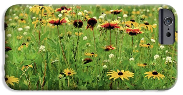 Meadow iPhone Cases - Wildflower Meadow iPhone Case by JQ Licensing