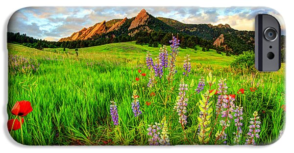 Fort Collins Photographs iPhone Cases - Wildflower Mix iPhone Case by Scott Mahon