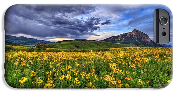 Fort Collins Photographs iPhone Cases - Wildflower Storm iPhone Case by Scott Mahon