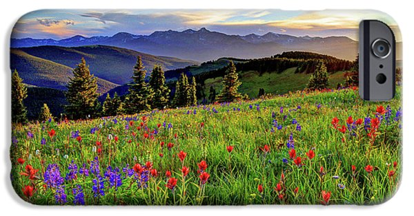 Fort Collins Photographs iPhone Cases - Wildflower Sunset Hill iPhone Case by Scott Mahon