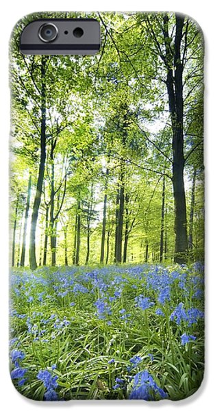 Recently Sold -  - Flower Of Life iPhone Cases - Wildflowers In A Forest Of Trees iPhone Case by John Short