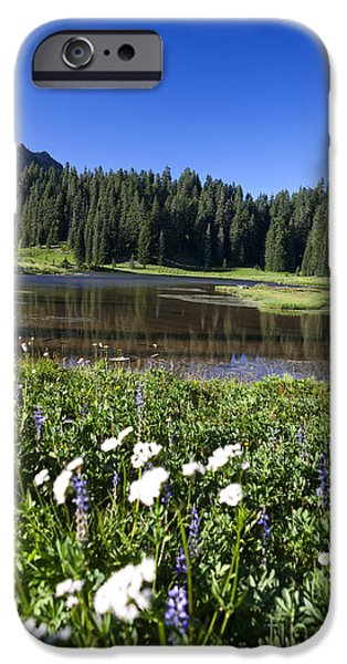 Meadow Photographs iPhone Cases - Wildflowers in front of Tipsoo Lake Mount Rainier National Park iPhone Case by Jason O Watson