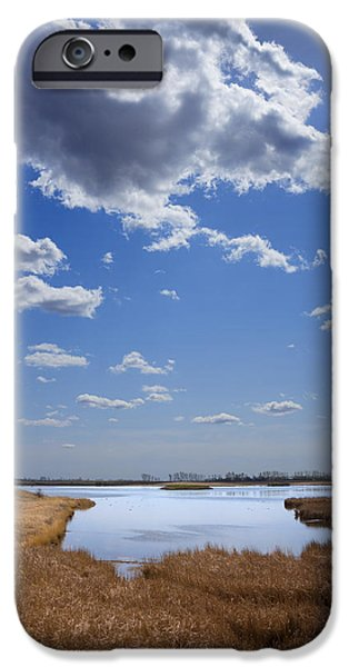 Peacefull iPhone Cases - Wildlife Refuge Prairie Pond iPhone Case by Donald  Erickson
