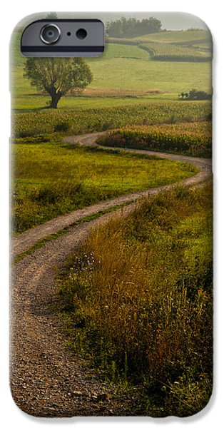 Country Road iPhone Cases - Willow iPhone Case by Davorin Mance
