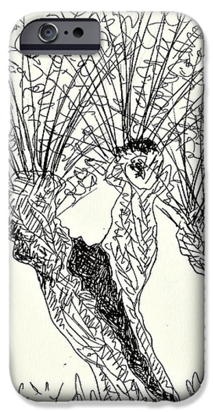 Flora Drawings iPhone Cases - Willow in Coswig iPhone Case by Chani Demuijlder