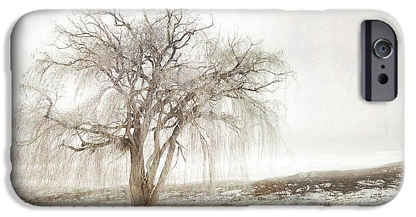 Willow Lake iPhone Cases - Willow Tree in Winter iPhone Case by Tara Turner
