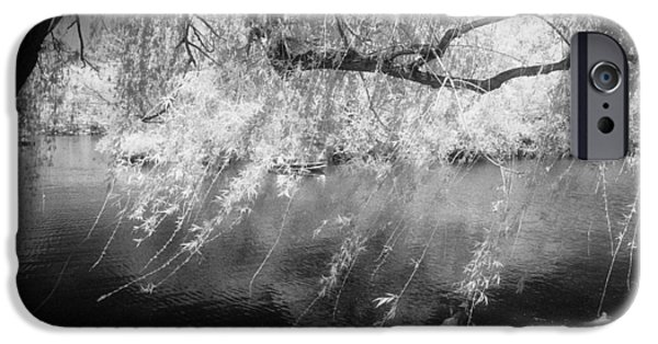 Recently Sold -  - Willow Lake iPhone Cases - Willow Tree Lake II iPhone Case by Dave Beckerman