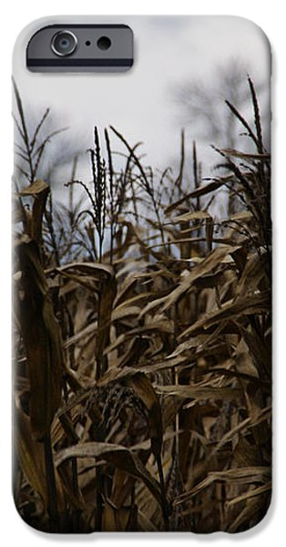 Wind Blown iPhone Case by Linda Knorr Shafer