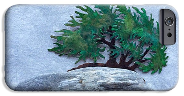 Granite Reliefs iPhone Cases - Windswept Finagashi Bonsai with Main Beachstone iPhone Case by Vanessa Williams