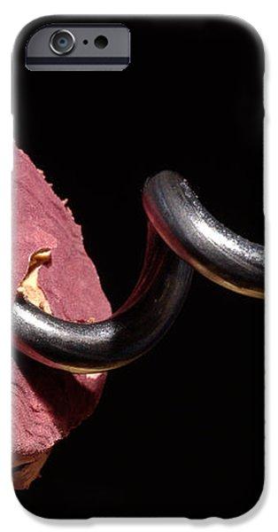 Wine Cork And Cork Screw iPhone Case by Frank Tschakert