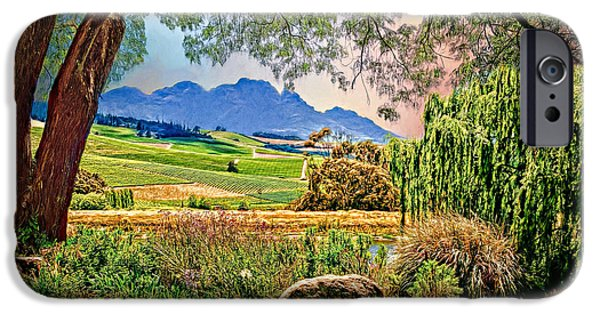 Stellenbosch iPhone Cases - Wine Country iPhone Case by Maria Coulson